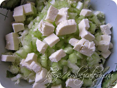 Адыгейский сыр или сыр панир